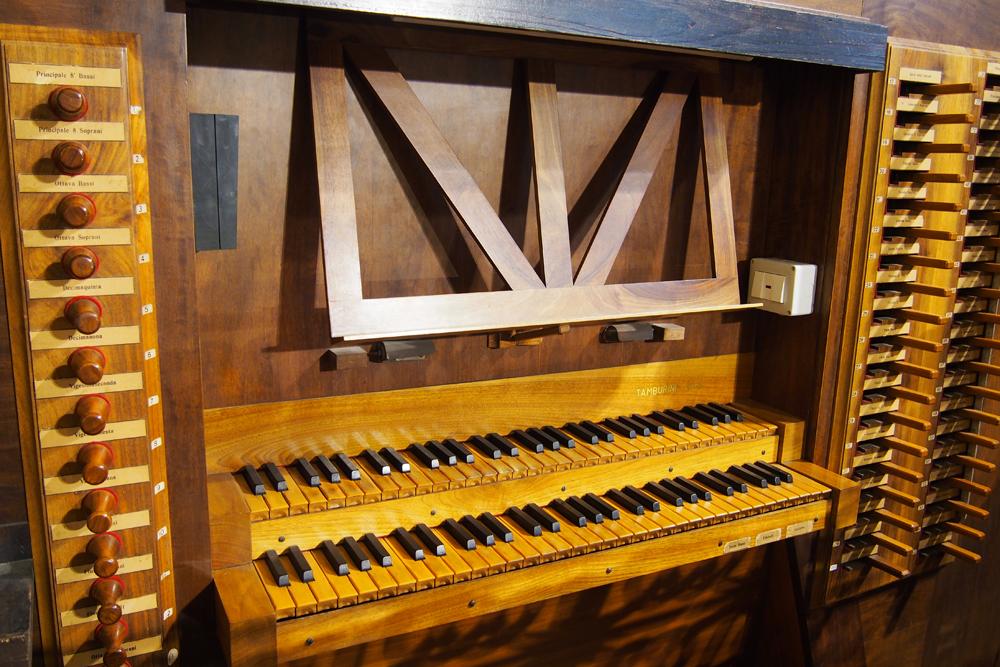 organo_002